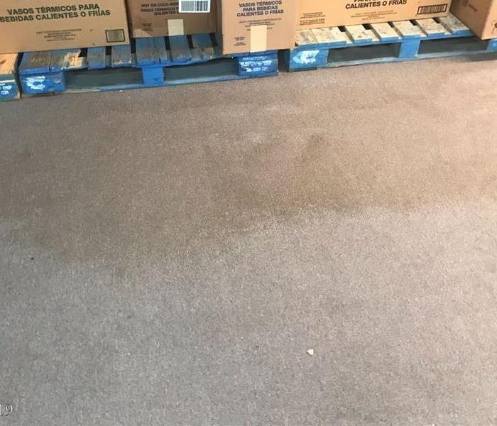 Floor at a commercial shop has visible water damage on carpet