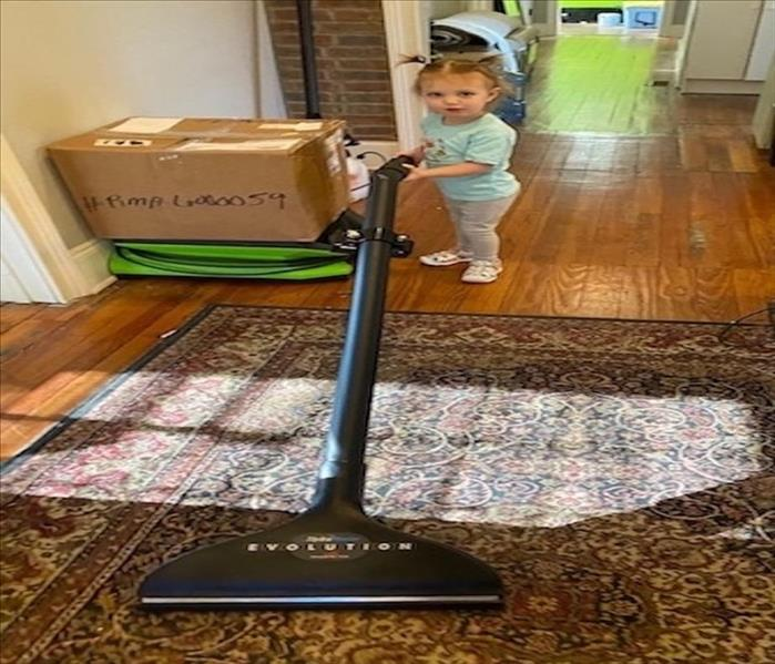 A two year old girl vacuuming the carpet