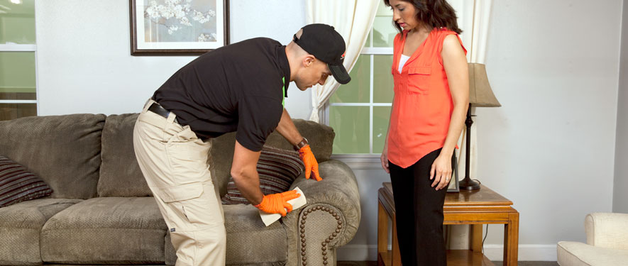 Anderson, SC carpet upholstery cleaning